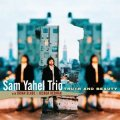 CD-Sam Yahel trio.Truth and beauty